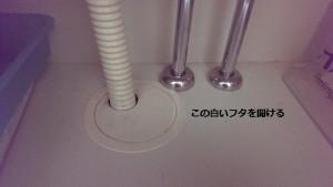 排水管の白い蓋